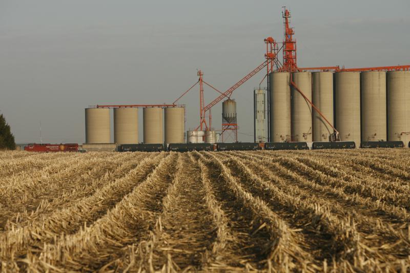 Farms Field