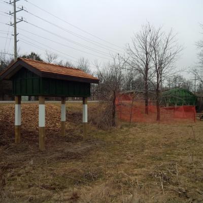 Bird house for Swallows